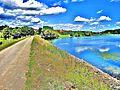 Lac de Michelbach, vu de la digue amont. (1).jpg