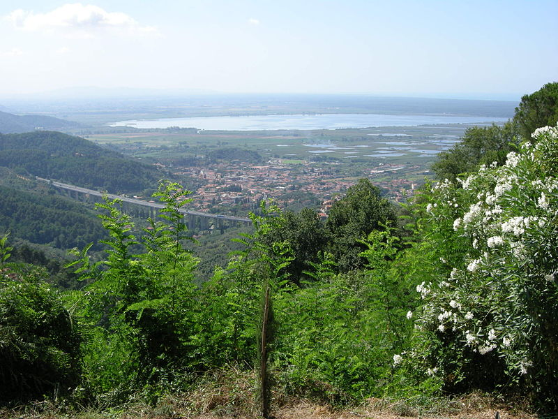 File:Lago di massaciuccoli, view 01.JPG