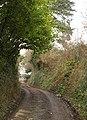 Lane at Westacott - geograph.org.uk - 1757572.jpg