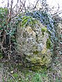 Large standing stone Cleveley Oxfordshire - geograph.org.uk - 119575.jpg