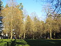 Laurelhurst Park in December 2011.JPG