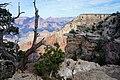 Le Grand Canyon du Colorado panorama en 2016.JPG