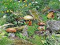 Le jardin des plantes (Le Voyage, Nantes) (9221361975).jpg