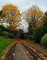 Leaves on the tracks - geograph.org.uk - 1034715.jpg