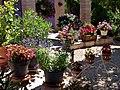 Les Amandiers, maison de vacances, Ferienhaus - panoramio.jpg