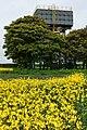 Little Weighton water tower - panoramio.jpg