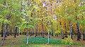 Lobnya, Moscow Oblast, Russia - panoramio (229).jpg