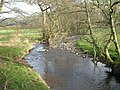 Looking downstream - geograph.org.uk - 706019.jpg