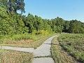Losing Stream Trail.JPG