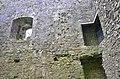 Lydford castle interior.jpg