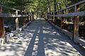MRNP — Kautz Creek Trail (21866178772) (2).jpg