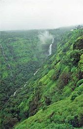 A scenic view of a river valley in the Western Ghats.