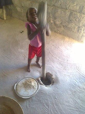 Pearl millet - Image: Mahangu poundin