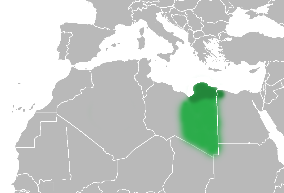 Map of Cyrenaica
