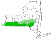 Map of New York highlighting Southern Tier.png