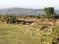 Mardon Down, Devon - geograph.org.uk - 1095156.jpg