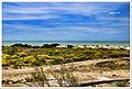 Mare di Sicilia.jpg