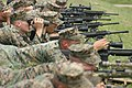 Marines of scout sniper platoon shoot the MK-11 rifle.jpg