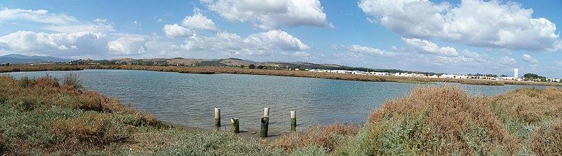 Marismas del río Palmones 02.JPG