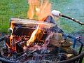 Marshmallows über Feuer rösten.jpg