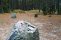 Megaliths in Węsiory, Pommerian (4).JPG