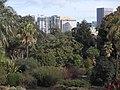 Melbourne Botanic Gardens view towards St Kilda Road 20180726-021.jpg