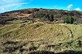 Merthyrmawr Warren - geograph.org.uk - 15183.jpg
