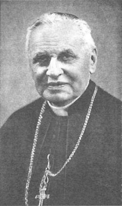 Mgr Emmanuel SUHARD.jpg