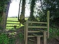 Mid Devon , Stile - geograph.org.uk - 1253780.jpg