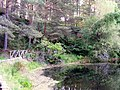Millbuies Country Park - geograph.org.uk - 1346649.jpg