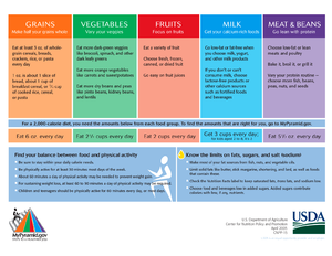 MyPyramid - MyPyramid miniposter with sample food group recommendations