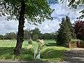 Mittenwalde-Ragow Dorfgraben Blick nach Süden.jpg