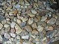 Moře kamínků.JPG