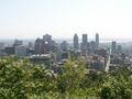 Montreal 3 db.jpg