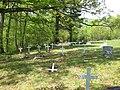 Mount Pisgah Benevolence Cemetery Romney WV 2010 04 25 04.jpg