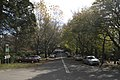 Mount Wilson NSW 2786, Australia - panoramio (33).jpg
