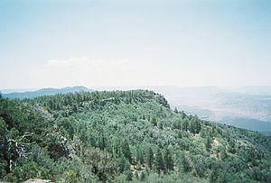 Mount Logan Wilderness - Image: Mt logan wilderness 1
