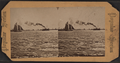 N.Y. Bay from Pier 29 (30?), from Robert N. Dennis collection of stereoscopic views.png