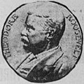 NEW ROOSEVELT MEDALLION (1904).jpg