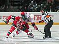 NHL 2010 Face Off Hurricanes @ Wild in Helsinki.jpg