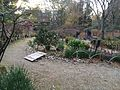 Nara Yoshikien Chaka Garden.jpg
