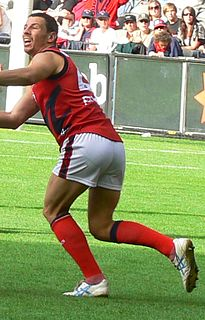 Nathan Brown (Australian footballer, born 1976) Australian footballer, born 1976