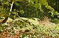 Naturpark und Biosphärenreservat Pfälzerwald - panoramio (7).jpg