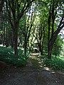 Naumkeag - Stockbridge MA (7710372978).jpg