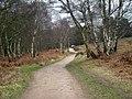 Nearing Abrahams Valley - geograph.org.uk - 1175126.jpg