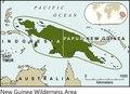 New Guinea Wilderness Area 2005 Print.tif