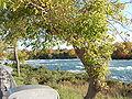 Niagara Falls 2008 PD 68.JPG
