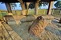 Niglihawa Ancient Asoka Pillar Kapilbastu Lumbini Zone Nepal Rajesh Dhungana(6).jpg