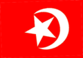 NoI flag 1.png
