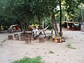 No Rancho do Afonsinho - panoramio.jpg